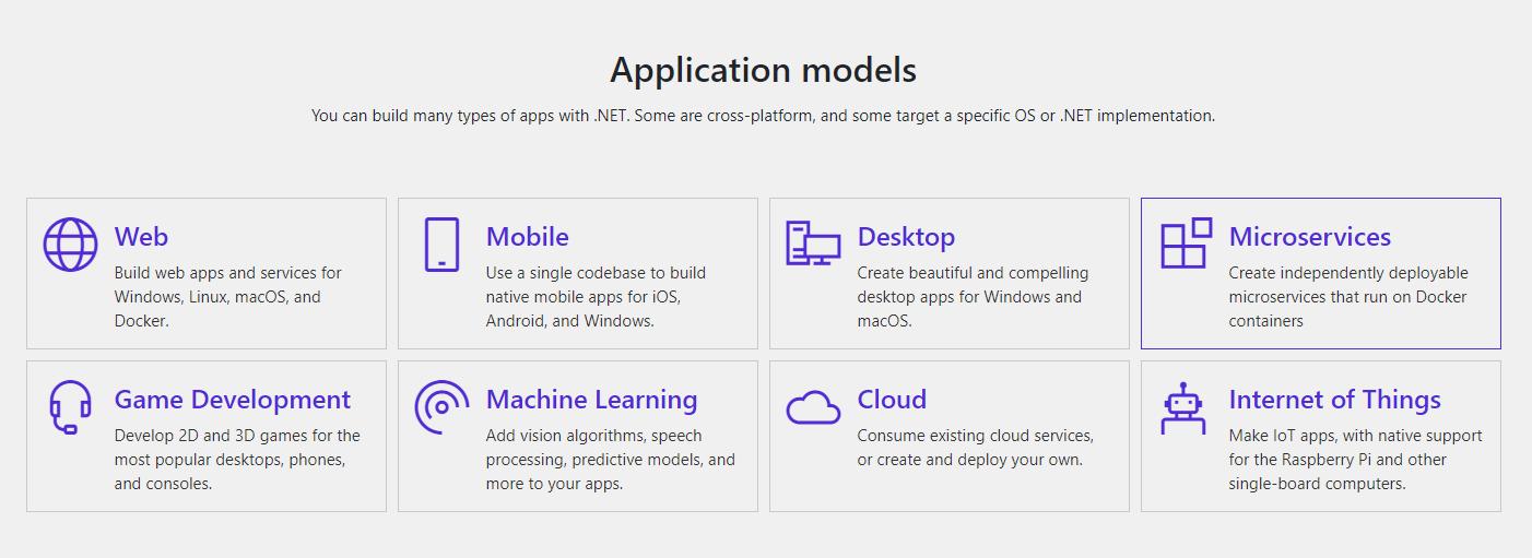 .NET 5 application models